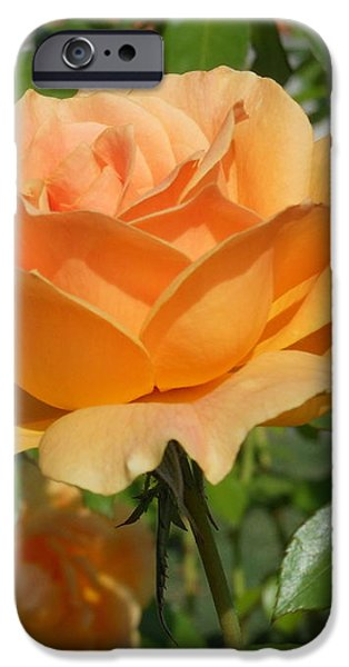 Symbol of Love iPhone Case by Kay Gilley