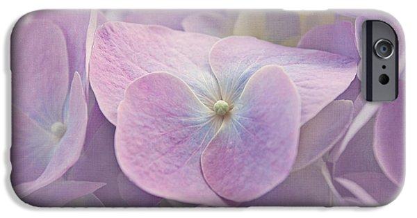 Purple Hydrangeas iPhone Cases - Symphony in Purple iPhone Case by Kim Hojnacki