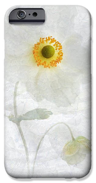 Close Up Floral iPhone Cases - Symphony iPhone Case by John Edwards