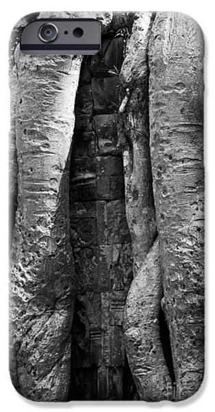 Tree Roots iPhone Cases - Ta Prohm Roots And Stone 04 iPhone Case by Rick Piper Photography