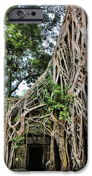 Tree Roots iPhone Cases - Ta Prohm Roots iPhone Case by Chuck Kuhn