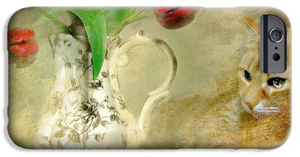 Still Life With Pitcher iPhone Cases - Tabby and Tulips iPhone Case by Diana Angstadt