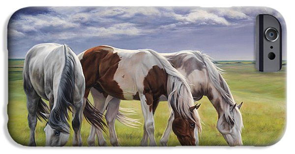 Barns Paintings iPhone Cases - Tail Wind iPhone Case by JQ Licensing