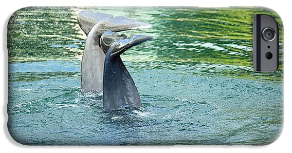 Ocean Mammals iPhone Cases - Tails iPhone Case by Cheryl Young