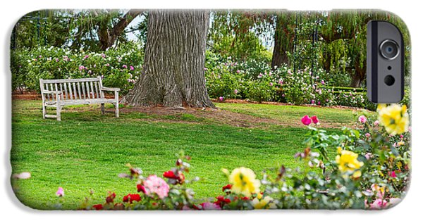 Rosaceae iPhone Cases - Take a Seat - beautiful Rose Garden of the Huntington Library. iPhone Case by Jamie Pham