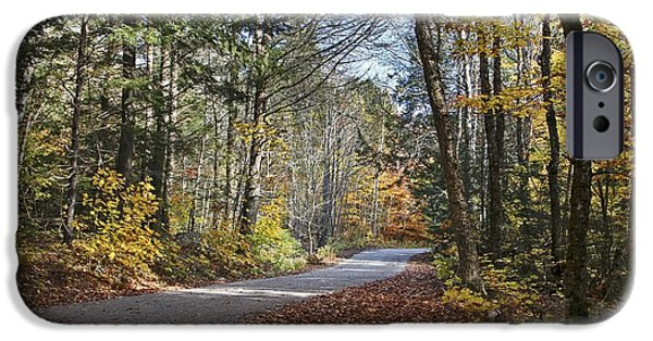 Rural Maine Roads iPhone Cases - Take A Walk iPhone Case by Karin Pinkham