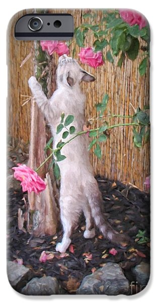 Bamboo Fence Digital iPhone Cases - Take Time to Smell the Roses iPhone Case by Peggy J Hughes