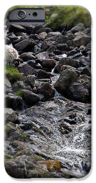 Taking a Drink at the Mountain Stream iPhone Case by Jerry Deutsch