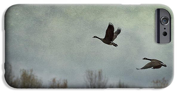 Freedom iPhone Cases - Taking Flight iPhone Case by Belinda Greb