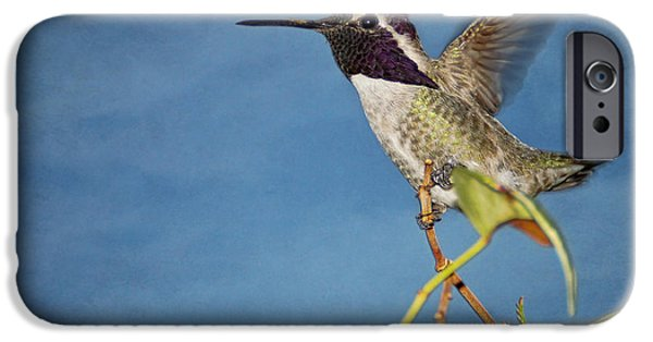 Ready To Fly iPhone Cases - Taking Flight iPhone Case by Peggy J Hughes