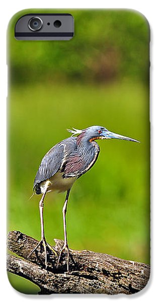 Tantalizing Tricolored iPhone Case by Al Powell Photography USA