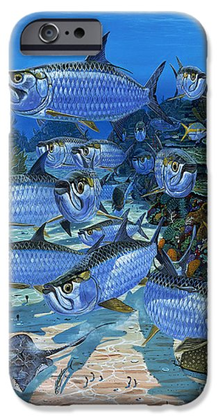 Paddle iPhone Cases - Tarpon Alley In0019 iPhone Case by Carey Chen