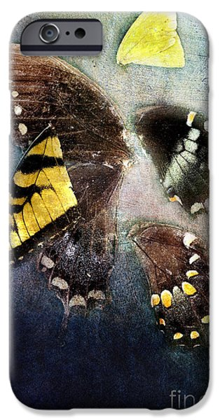 Torn iPhone Cases - Tattered Dreams iPhone Case by Stephanie Frey