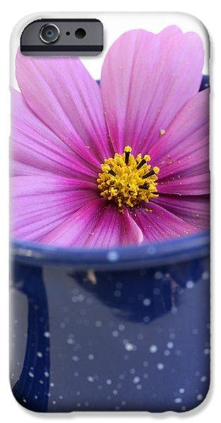 Tea Garden iPhone Case by Frank Tschakert