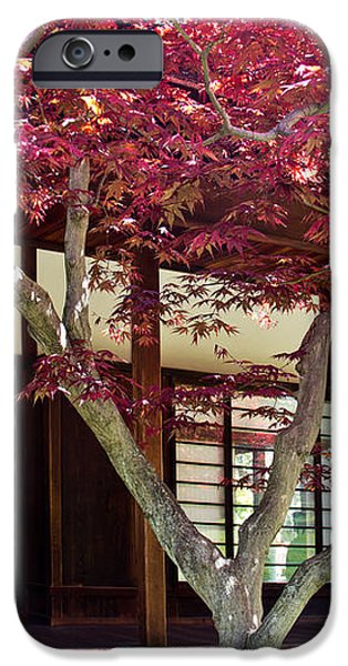Tea House Thru the Maple iPhone Case by Tom Gari Gallery-Three-Photography