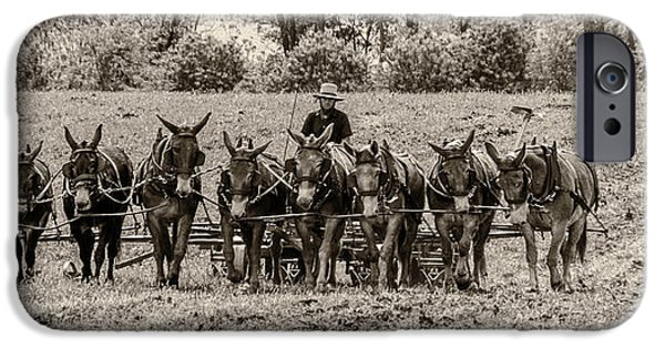 Amish Photographs iPhone Cases - Team of Eight iPhone Case by Guy Whiteley