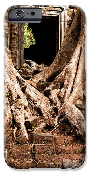 Tree Roots iPhone Cases - Temple Ruins 02 iPhone Case by Rick Piper Photography