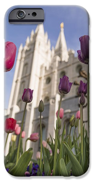 Angel Moroni iPhone Cases - Temple Tulips iPhone Case by Chad Dutson