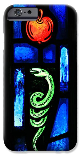Serpent iPhone Cases - Temptation iPhone Case by Stephen Stookey