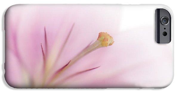 Stamen Digital Art iPhone Cases - Tender Lily iPhone Case by Melanie Viola