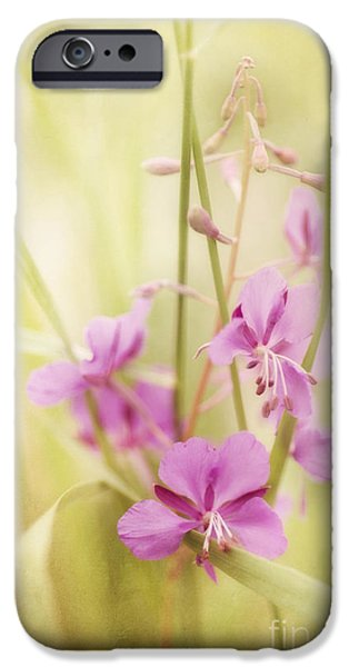 Flora iPhone Cases - Tendresse iPhone Case by Priska Wettstein
