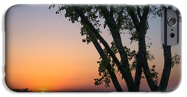 Vineyard Art iPhone Cases - Tennessee Sun iPhone Case by Clay Townsend