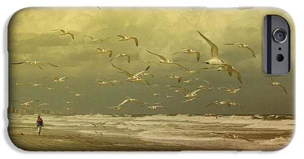Tern iPhone Cases - Terns in the Clouds iPhone Case by Deborah Benoit