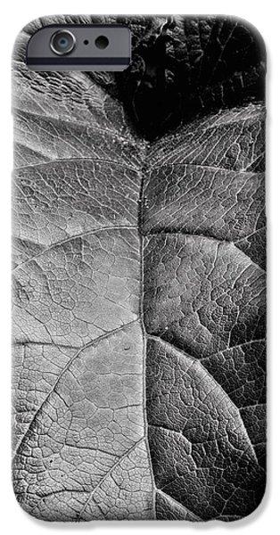 Terrestrial iPhone Cases - Terrestrial  iPhone Case by JC Findley