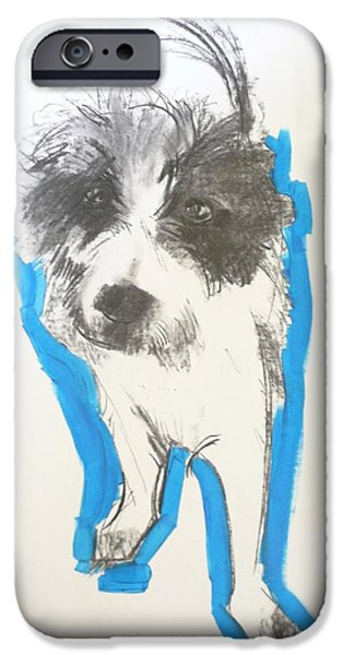 Terrier iPhone Cases - Terrier, 2012 Charcoal And Oil On Paper iPhone Case by Sally Muir