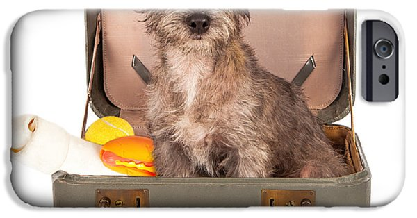 Homeless iPhone Cases - Terrier Dog in Suitcase iPhone Case by Susan  Schmitz
