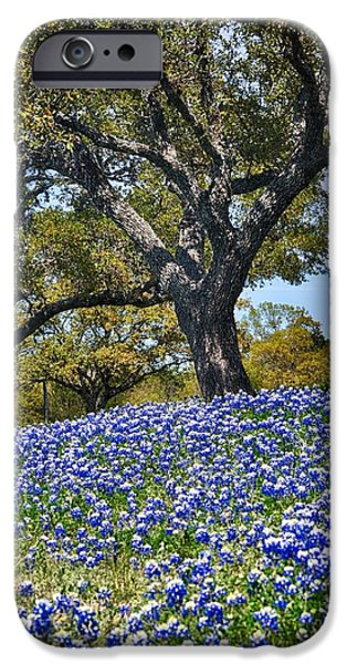 Recently Sold -  - Flora iPhone Cases - Texas Bluebonnet Hill iPhone Case by Kristina Deane