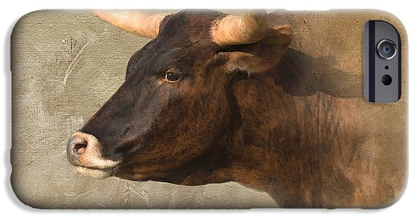 Texas Longhorn iPhone Cases - Texas Longhorn # 3 iPhone Case by Betty LaRue