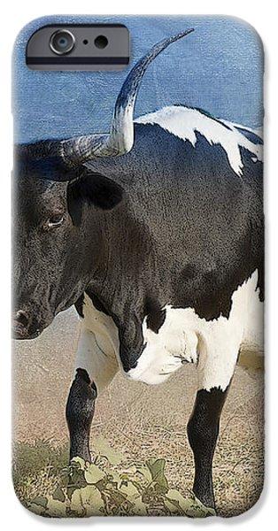 Texas Longhorn #7 iPhone Case by Betty LaRue