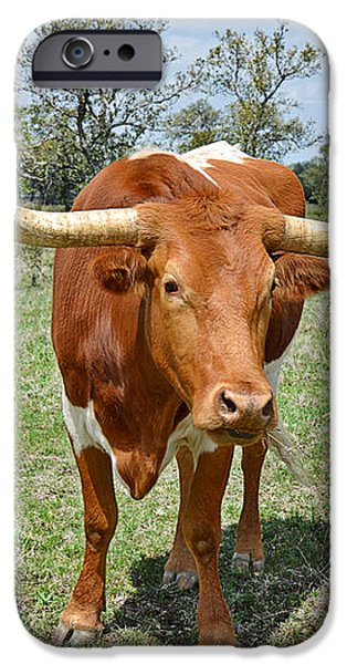 Texas Longhorn iPhone Case by Christine Till