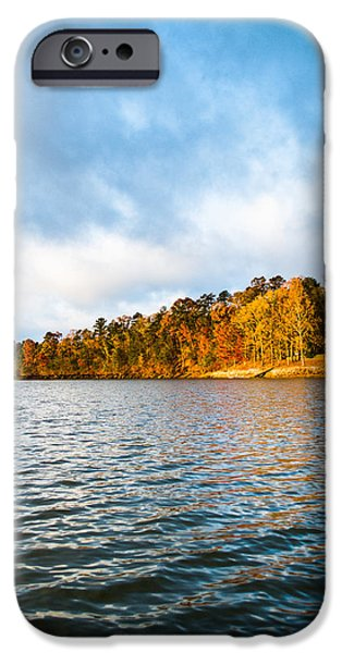 Log Cabin Photographs iPhone Cases - Textures and Colors iPhone Case by Parker Cunningham