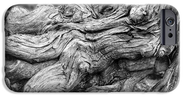 Tree Roots Digital iPhone Cases - Textures of Nature Black and White iPhone Case by Jack Zulli