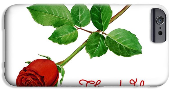 Noble iPhone Cases - Thank You Card Red Rose iPhone Case by Irina Sztukowski