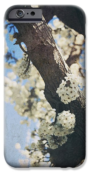 Blossom iPhone Cases - That March iPhone Case by Laurie Search