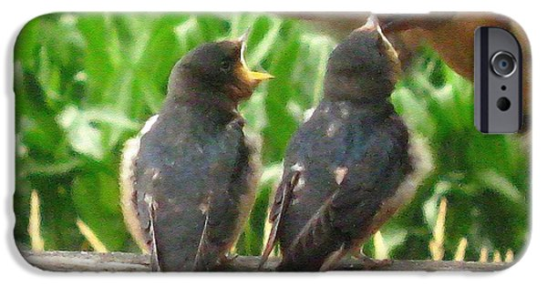 Best Sellers -  - Barn Swallow iPhone Cases - The Adult Barn Swallow Arrives with Lunch for One iPhone Case by J McCombie
