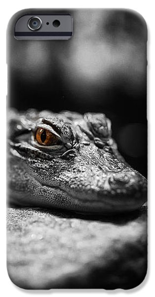 The Alligator's Eying You iPhone Case by Linda Leeming