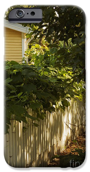 Charming Cottage iPhone Cases - The American Dream iPhone Case by Margie Hurwich