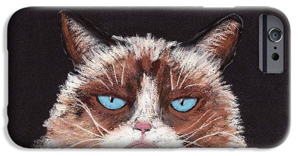 Animal Cards Pastels iPhone Cases - The Answer is No iPhone Case by Anastasiya Malakhova