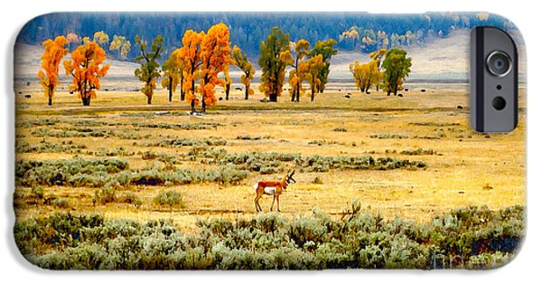 Ann Johndro-collins iPhone Cases - 	The Antelopes Palace			 iPhone Case by Ann Johndro-Collins