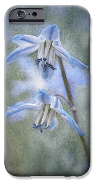 Jeff Swanson iPhone Cases - The Arrival of Spring iPhone Case by Jeff Swanson