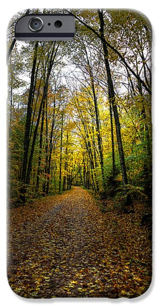 Old Country Roads Photographs iPhone Cases - The Back Roads of Autumn iPhone Case by David Patterson