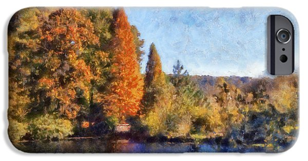 Fall Scenes iPhone Cases - The Bald Cypress iPhone Case by Daniel Eskridge
