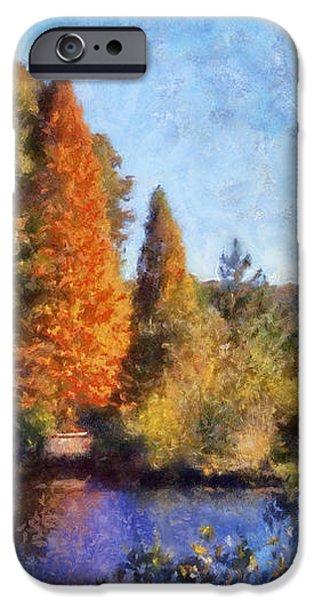 The Bald Cypress iPhone Case by Daniel Eskridge