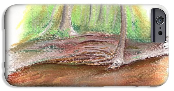 Creek Pastels iPhone Cases - The Bank of Blackwater Creek iPhone Case by MM Anderson