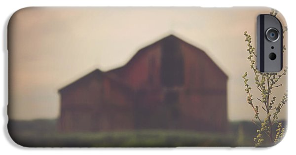 Farm iPhone Cases - The Barn Daylight Version iPhone Case by Carrie Ann Grippo-Pike