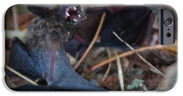 Bat iPhone Cases - The Bat Painterly iPhone Case by Ernie Echols